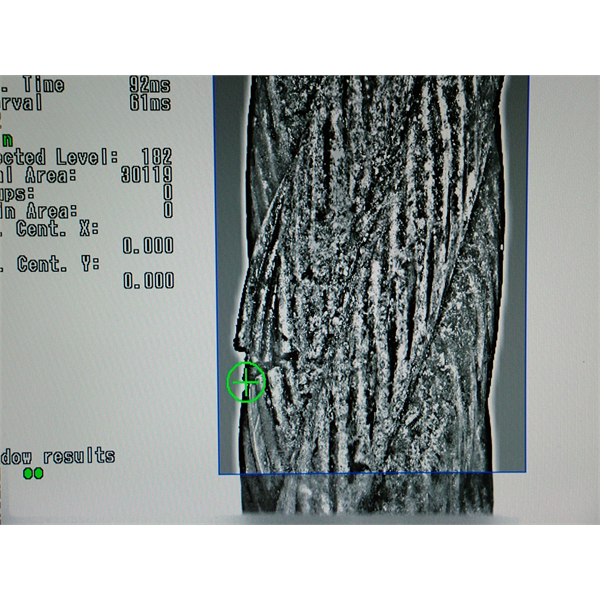 Systemy sztucznej wizji do wizualnej inspekcji lin stalowych i inspekcji konstrukcji z wykorzystaniem technik wiroprądowych